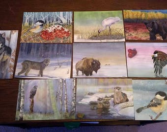 10 Pack Wildlife postcard collection