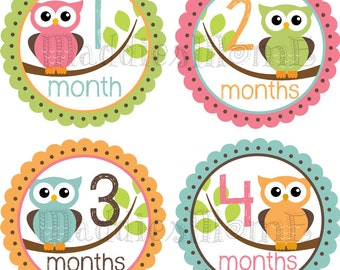 Baby Girl Month Stickers, Monthly Baby Stickers, Milestone Stickers, Baby Month Stickers, Monthly Bodysuit Sticker (Emma)