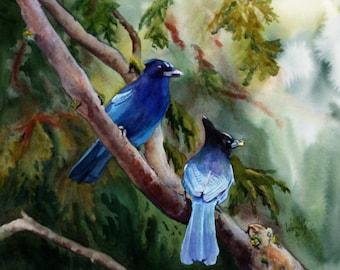 B10  Treats for My Sweetheart, Original Art Work, Stellar Jays, One of a Kind, Bird Art
