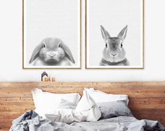 Rabbit print,  Rabbit Art Print, Baby Animal Prints,Rabbit Printable Art , Woodland Nursery Decor, Bunny ART, Bunny Photo,Rabbit Photography