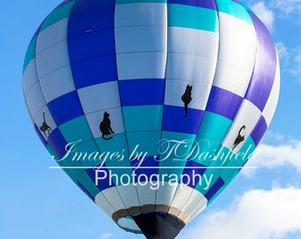 Cats, Hot Air Balloon, Albuquerque Balloon Fiesta,  Fine Art Photography, Fine Art Print