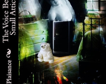 The Voice Behind the Small Attic Door by Mary Lynn Plaisance- Louisiana Author