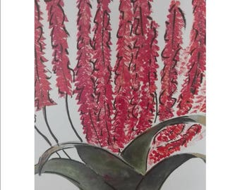 Original acrylic painting of South African aloes on canvas