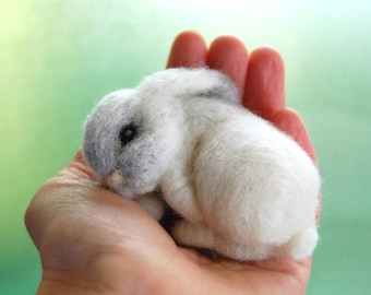 adorable, bunny, and animals afbeelding | cute | Pinterest | Bunny ...