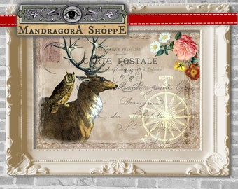 French shabby chic Ephemera deer with owl digital collage sheet instant download framing printable digital sheet card making clip art