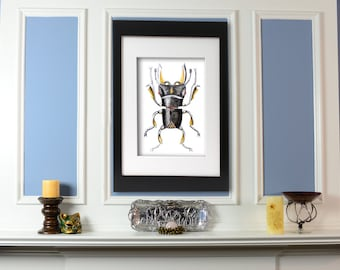 Stag Beetle Steampunk Art Giclee Print