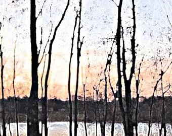 Sylvan Sunset