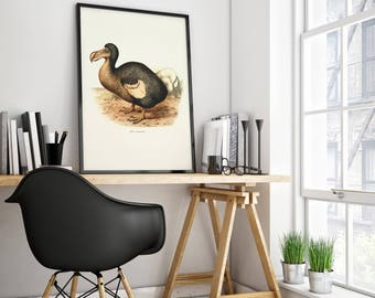 Retro Dodo poster - Beautiful vintage poster with drawing of the extinct but very special Dodo bird