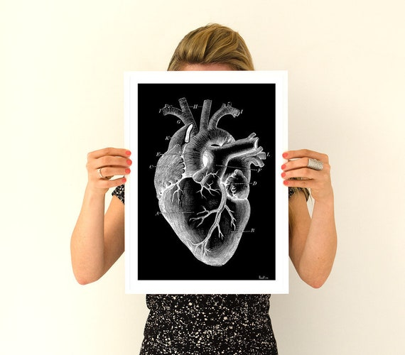 Human heart, anatomy art, anatomical art, wall art, wall decor, poster, anatomy, anatomy poster, science, medical art, human heart SKA124WA3