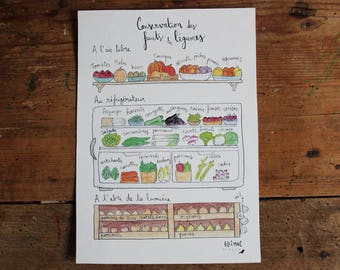 """Large A5 card / poster """"Preservation of fruits and vegetables"""" - illustration ink & watercolor - home kitchen - eco-friendly design"""