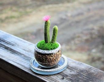 Rhinestone cactus terrarium-Real pillow moss preserved-Faux cactus-Rhinestone vase