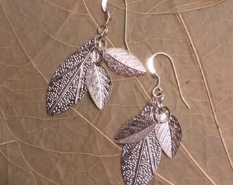Sterling Leaves Earrings