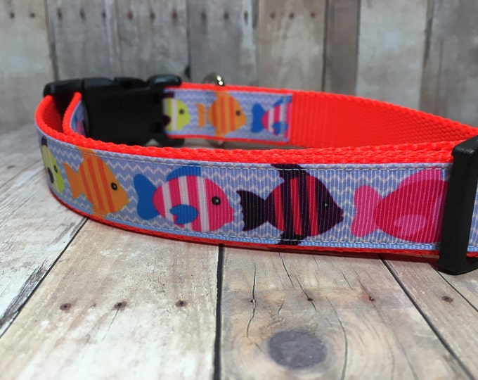 "The Crawford | Designer 1"" Width Dog Collar 