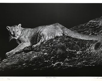 Robert Pow 'Mountain Lion' - Hand Signed Print - Canadian - Others Available - GallArt