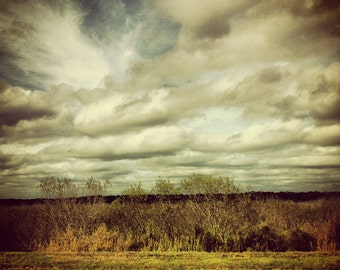 Florida 2 - FREE SHIPPING - Landscape Photo Print Small Town South Southern Art Old Rural Lonely Swamp Water Clouds Green White Yellow Art