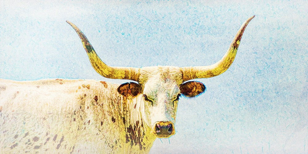 Colorful Bull Horn Wall Decor Elaboration - Wall Art Design ...