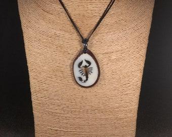 Carved Scorpion Tagua Nut Necklace