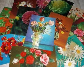Unused vintage greeting cards - Vintage flower postcards - Blank vintage flower postcard set - Vintage nature postcard lot - Soviet postcard