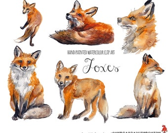 Fox clip art, watercolor fox painted by hand, forest animals clip art,  6 clipart 300 dpi PNG  files (5228)