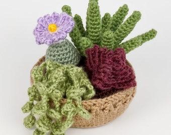 PDF Succulent Collection 3, four realistic potted plant CROCHET PATTERNS