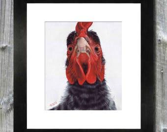 Chicken Art Print / Pastel Painting / Farm Art