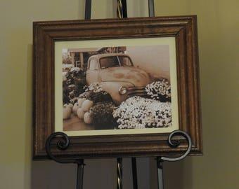 Pumpkins and An Antique Truck Photogragh