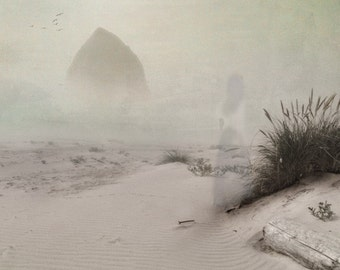 The Remains of Time -  8 x 10 Landscape Foggy Beach Seascape - Limited Edition Print by My Antarctica