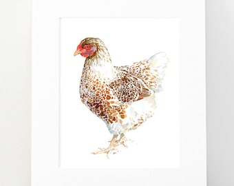 Chicken Watercolor Print, white and brown hen, 8x10 farm animal print