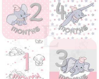 Dumbo Month Stickers, Baby Girl Monthly stickers, Baby month stickers, Months 1-12 stickers, Dumbo Nursery