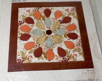 Quilt Kit with fabric,  Instructions to Quilt