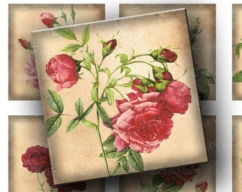 INSTANT DOWNLOAD Digital Images Collage Sheet Flowers Roses 2 Inch Squares Romantic Nature Squares for Pendants Magnets Crafts (GSTWO9)