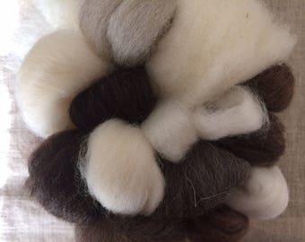 "wool ""tasting"" kit, 4 oz - make yarn handspinning"