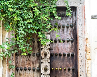 "Door Photography, Travel Photography, Zanzibar, Art Print, Architectural Photography, Large Print, Wall Decor ""Vine Covered Door"""