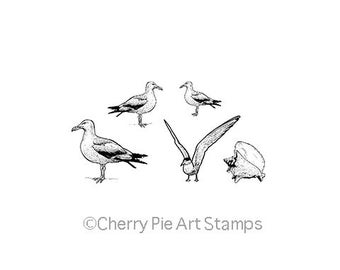Set of seagulls and seashell -5 CLiNG RuBBer STaMPs by Cherry Pie L322