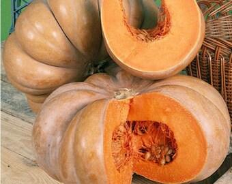 Pumpkin MUSQUE DE PROVENCE seeds 1g fresh seeds best before 2019