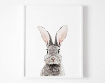Nursery Decor, Nursery Wall Art, Bunny Print, Animal Nursery Prints, Nursery Animal Print, Bunny Print,Animal Print For Nursery,Rabbit