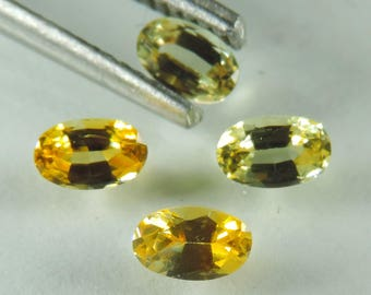 1.45 cts yellow sapphire faceted oval lot Montana