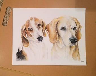 Custom Pet Portrait (Multiple Pets in One Portrait) - Colored Pencil