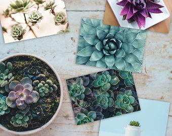 Postcard Set // Succulents