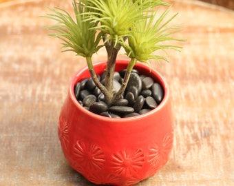 rouge vase pour plante grasse