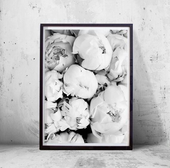 Blumenkunst Druck Pfingstrose Blume schwarz weiß Wand