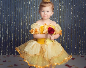 Belle inspired costume dress 5