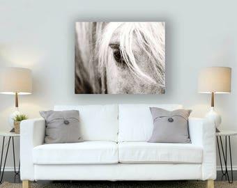 Metal Print, Horse Photography, Photograph on Metal, Horse Print, White Horse Photo, Horse Eye Photo, Aluminum Print, Photo on Metal