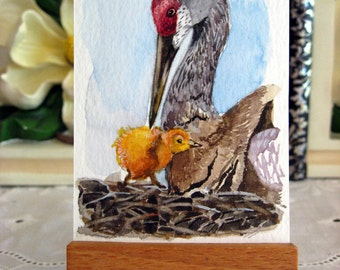 ACEO Limited Edition 2/25-First Steps of a Sandhill Crane, in watercolor