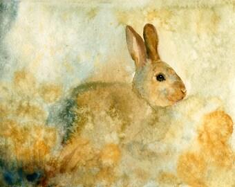 Bunny Original watercolor painting 10x8inch