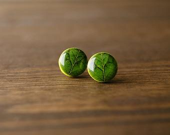 Green stud earrings, green leaf earrings, nature earrings, plant earrings, vegetal earrings