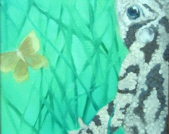 Toad and Moth, Woodland Discoveries, Nature Journal to Canvas