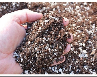 1 gallon bag PLUMERIA soil......Pearlite rich potting soil