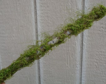 Large Moss Branch 2-3FT