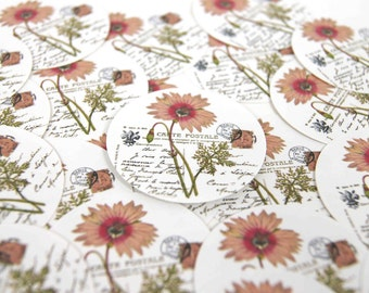 Stickers Envelope Seals Gerber Daisy set of 24 1.5 inch round SES43